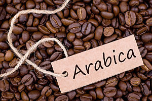 arabica_coffee_beans